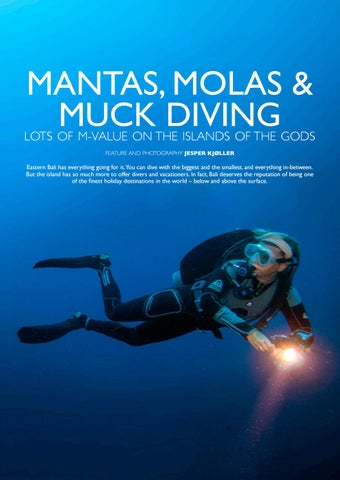 Page 97 of Mantas, Molas & Muck Diving