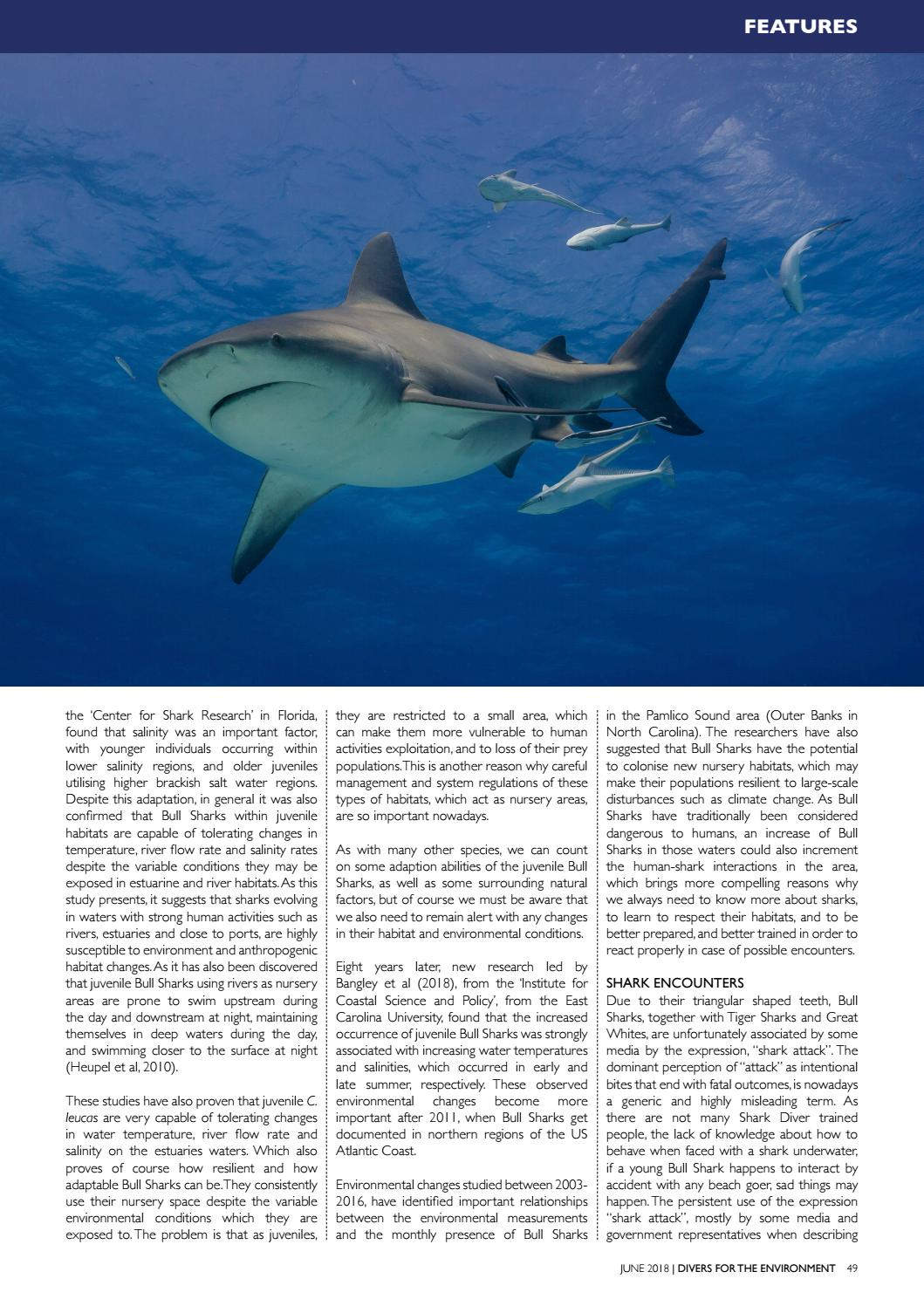 Divers For The Environment June 2018 By Divers For The Environment Issuu