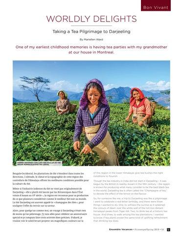 Page 53 of Taking a Tea Pilgrimage to Darjeeling