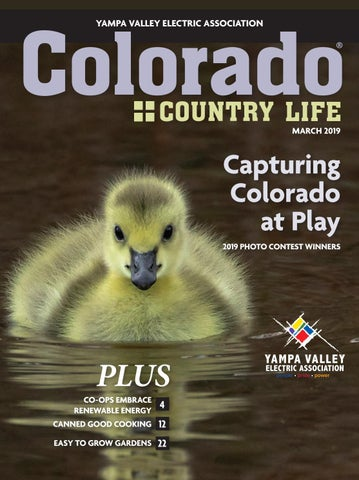 Colorado Country Life March 2019 Yampa Valley by American