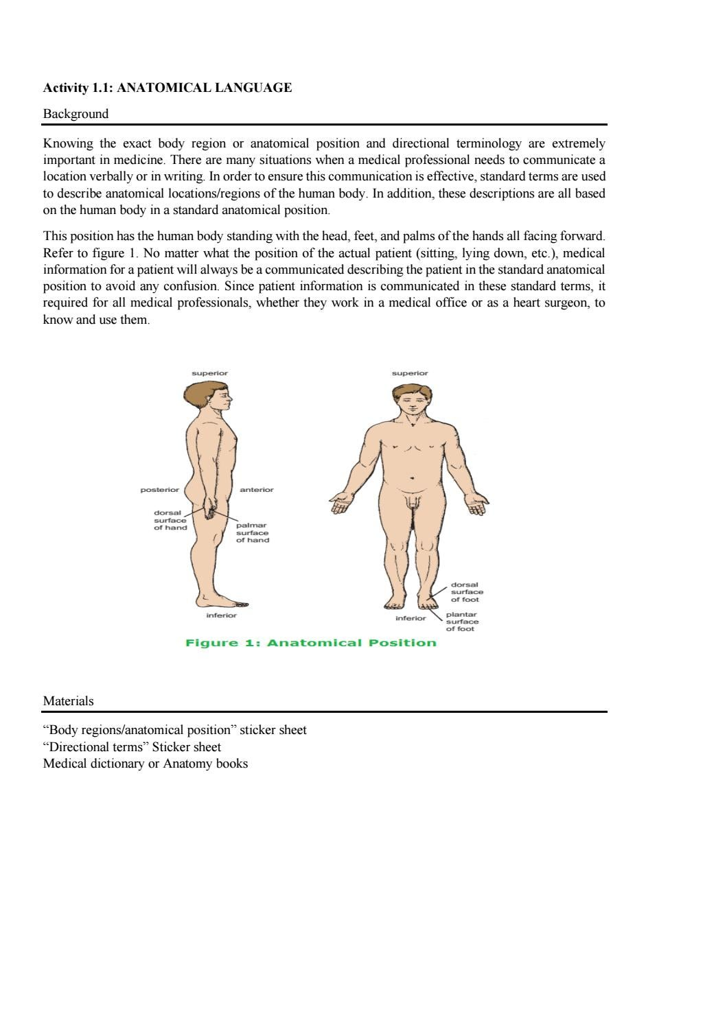 Introduction To Human Body By Bhs105 Fsk Issuu