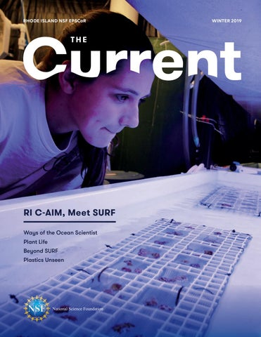 Winter edition of The Current is here! – RI NSF EPSCoR