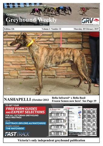 Victorian Greyhound Weekly 126 by The Waterline News - issuu