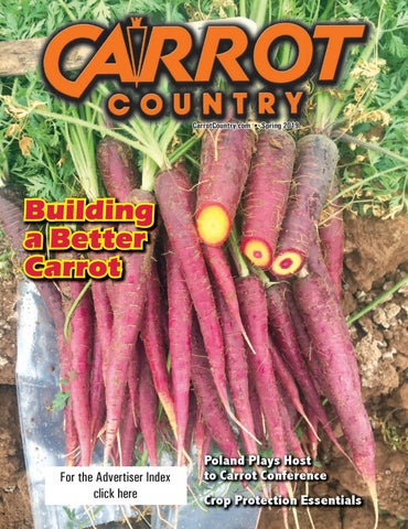 Carrots and Related Vegetable Umbelliferae (Crop Production Science in Horticulture, Volume 10)
