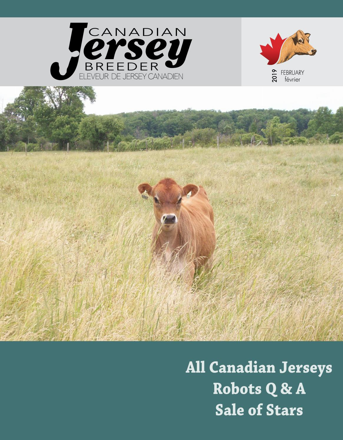 2019 Canadian Jersey Breeder February By Canadian Jersey