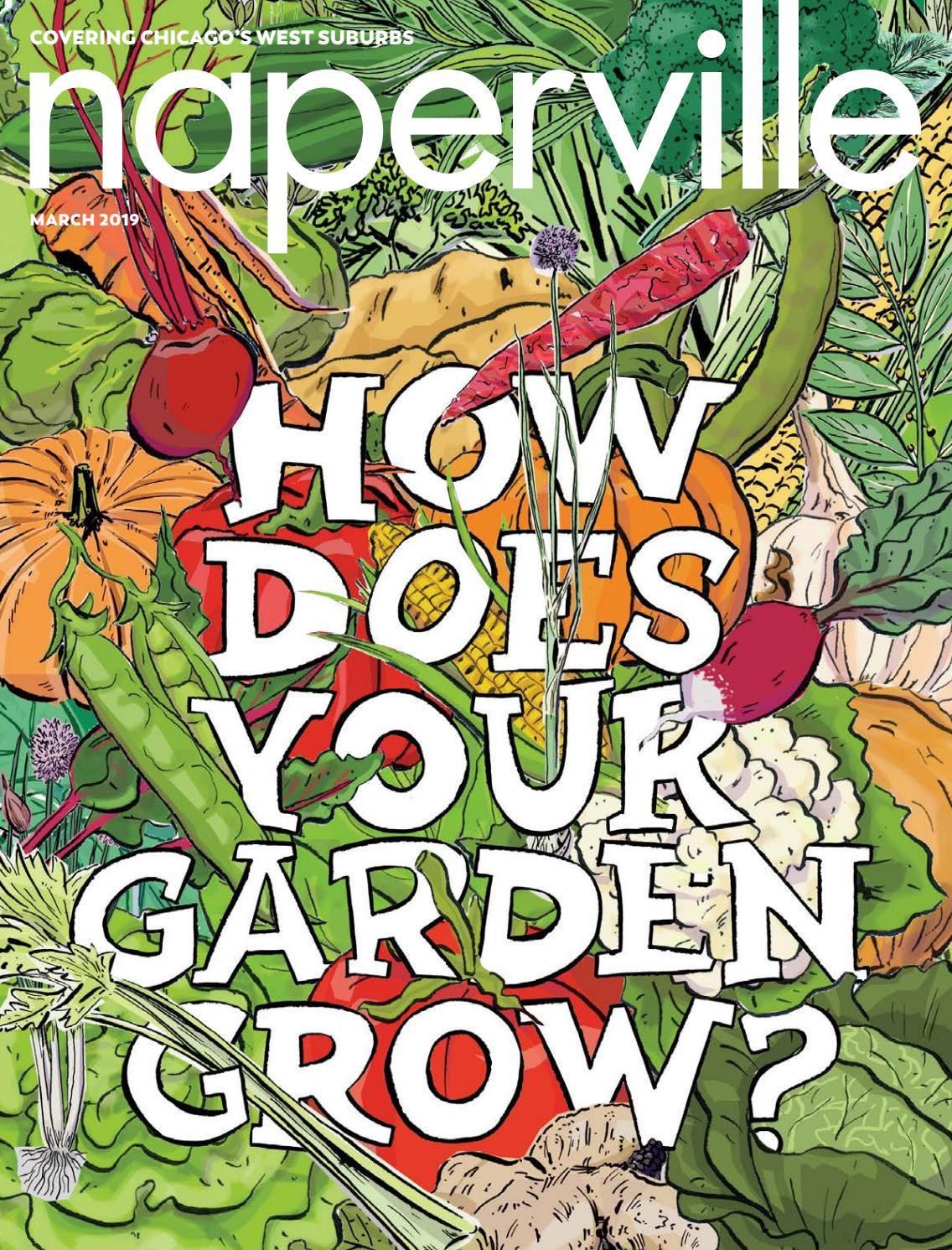 Fine Graphic Art Home Wall Design Decor Nature Poster 1154 Country scene