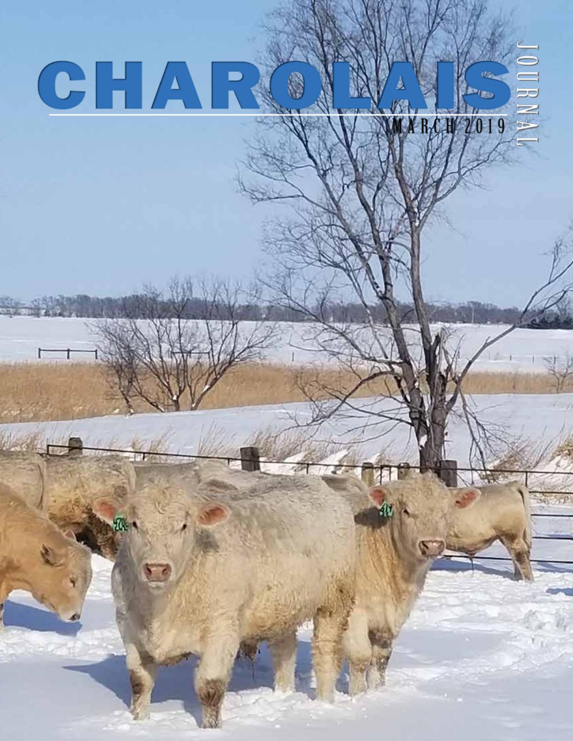 c8c93d0e4897a Charolais Journal by EDJE - issuu
