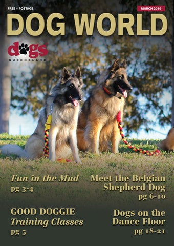The Queensland Dog World March 2019 by Dogs Queensland - issuu
