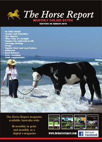 a55e86d10 The Horse Report March 2019 by the horse report - issuu
