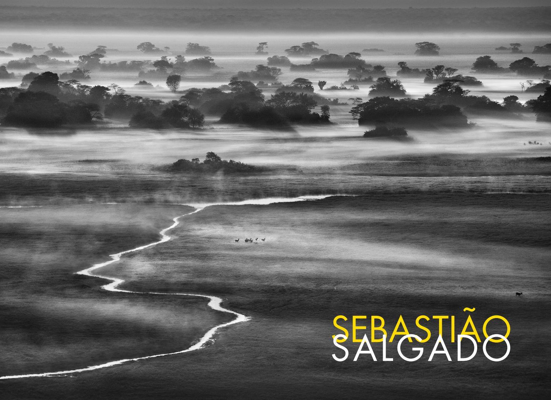 Sebastião pdf genesis salgado Génesis. Sebastião