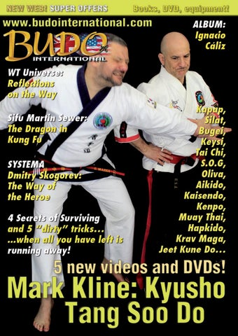 Hojo Undo Karate Makiwara Martial Arts Training Kung Fu MMA Post Only