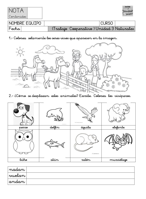 Cooperativo Evaluación U3naturales By Antonio Vázquez Issuu