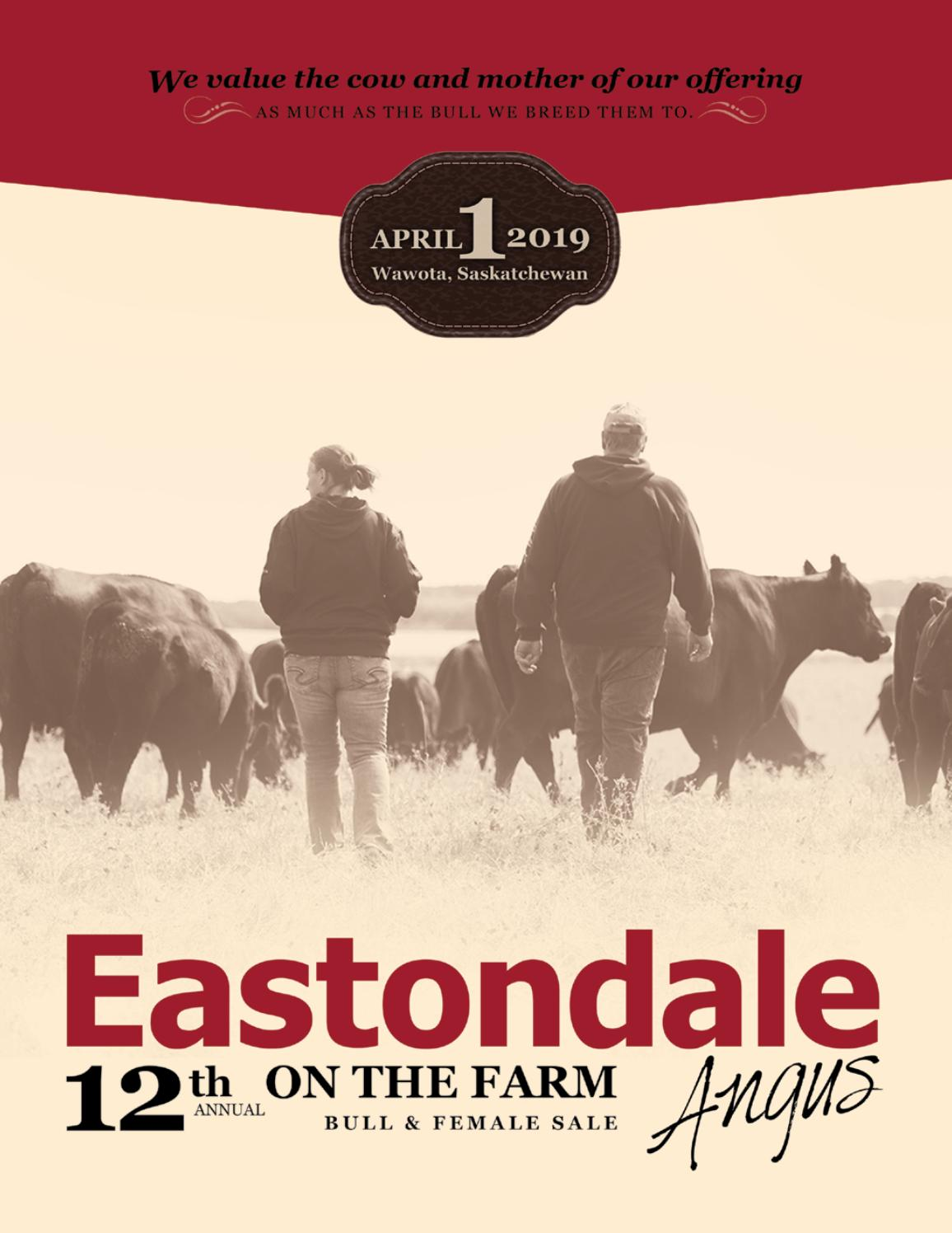 Eastondale Angus 12th Annual On the Farm Bull & Female Sale by