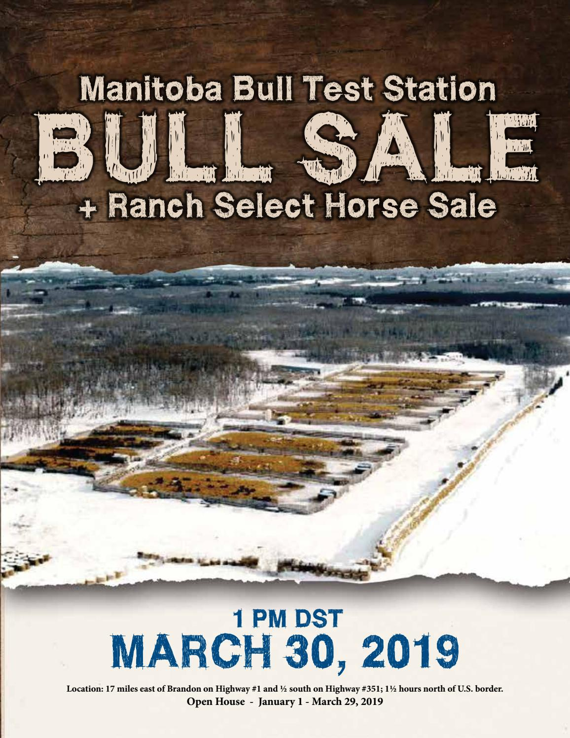 2019 Manitoba Bull Test Station Bull & Select Horse Sale by
