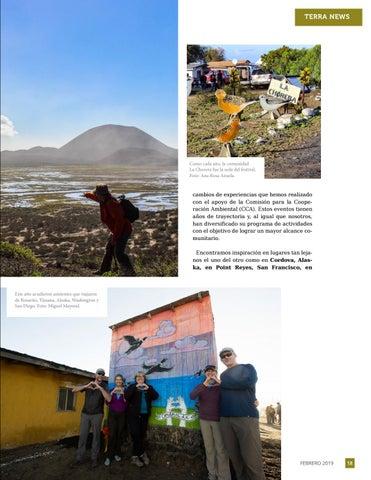Page 19 of 4to. Festival de las Aves Bah\u00EDa de San Quint\u00EDn