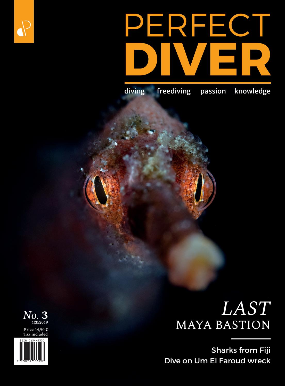 Perfect Diver Magazine 3 issue by perfectdiver - issuu