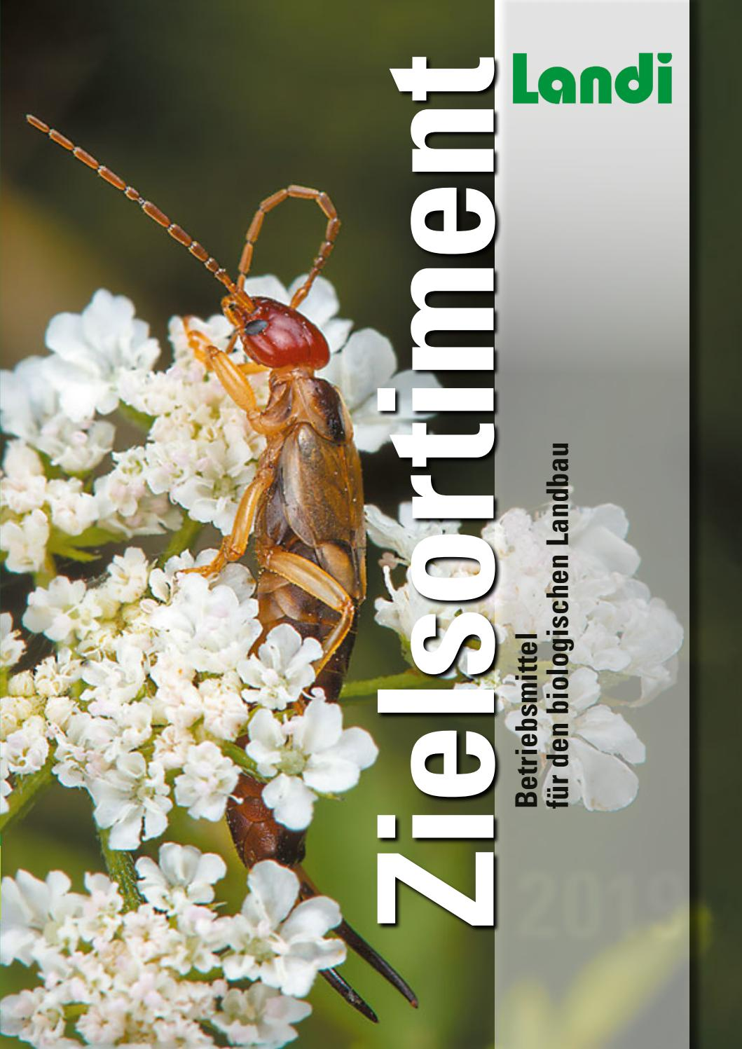 Kontakt Eimer Bienen Fütterung 2L x 10