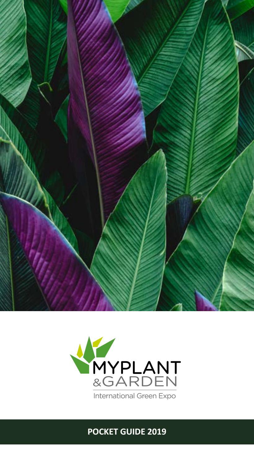Ingrosso Tappeti San Giuseppe Vesuviano catalogo myplant & garden 2019 by myplant & garden - issuu