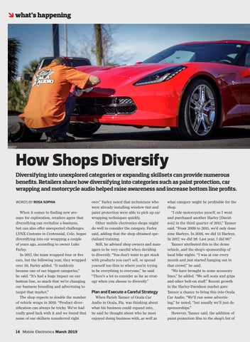 Page 14 of How Shops Diversify