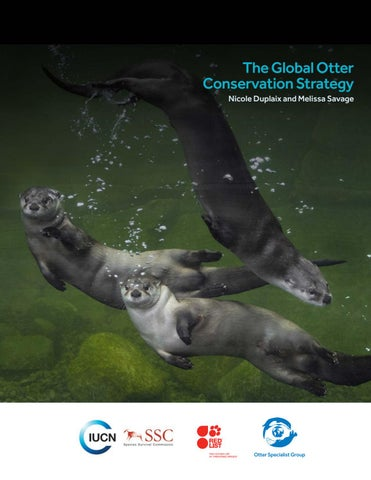 The Global Otter Conservation Strategy by WildWorld B V  - issuu