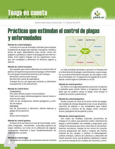 Page 4 of ¡Plantar es Avanzar!