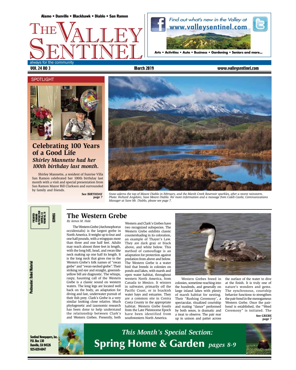 The Valley Sentinel_March 2019 by Sentinel Newspapers - issuu