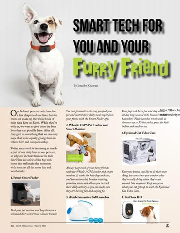 Page 16 of Smart Tech For You and Your Furry Friend