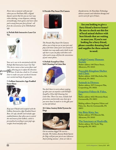 Page 17 of Smart Tech For You and Your Furry Friend