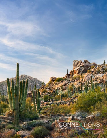 Page 41 of Experience Scottsdale, AZ
