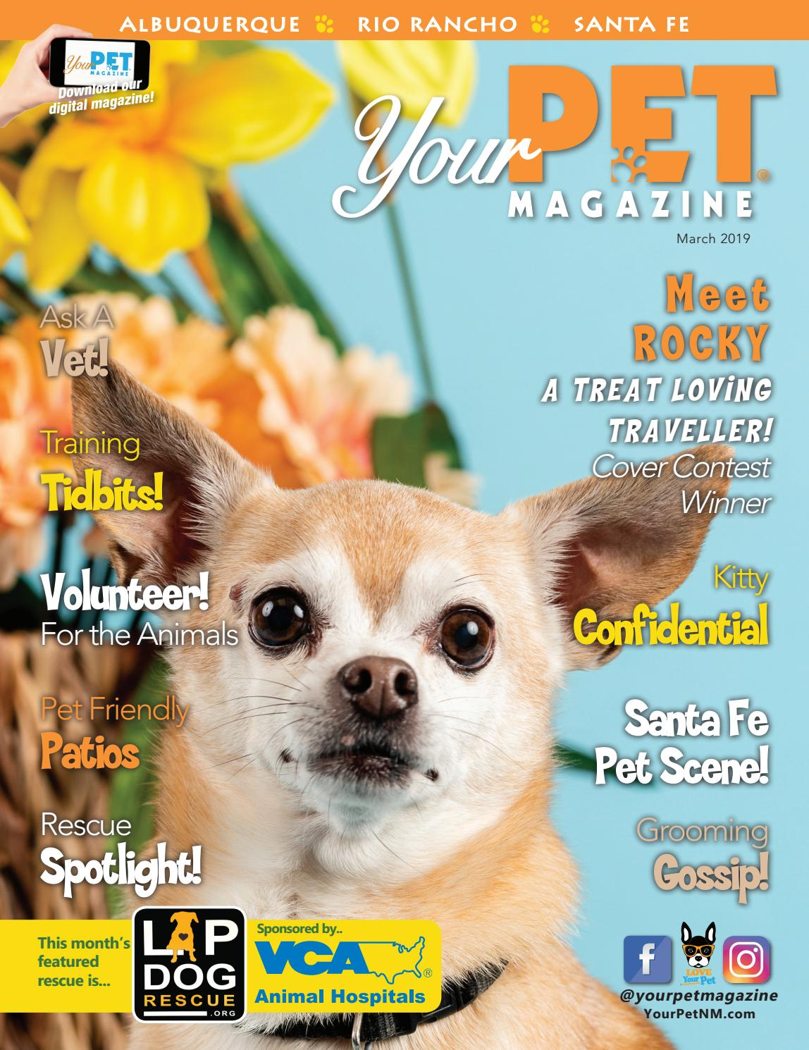 Your Pet Magazine March 2019 By Your Pet Magazine Issuu