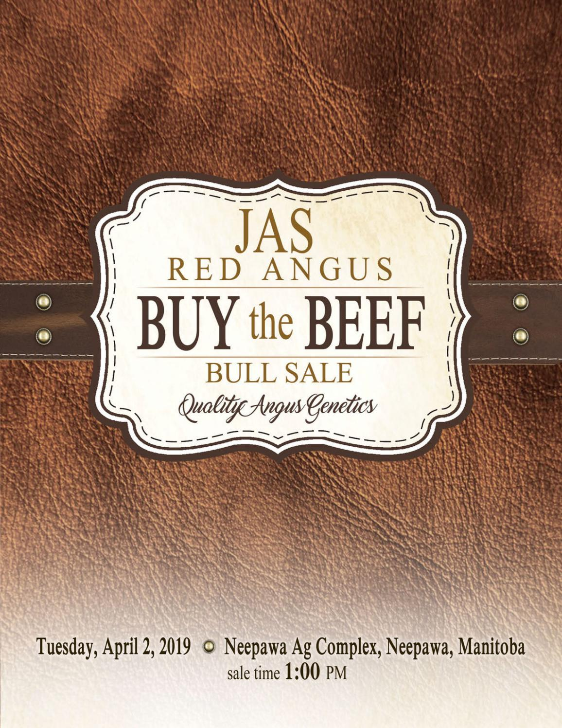 Welp Jas Red Angus Buy the Beef Bull Sale 2019 by Bouchard Livestock LY-11