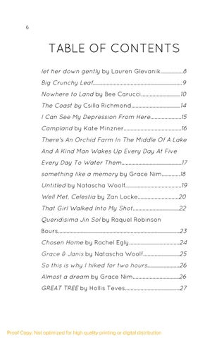 Page 6 of Table of Contents