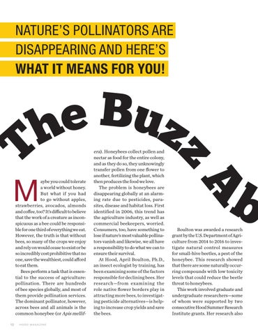 Page 12 of The Buzz About Bees