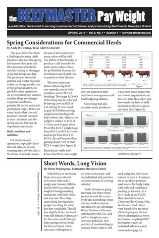 b992f7a9f The Beefmaster Pay Weight - Spring 2019 by Beefmaster Breeders ...