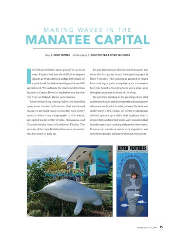 Page 17 of Making Waves In The Manatee Capital