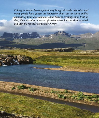 Page 47 of Iceland: Another Year with the Giants