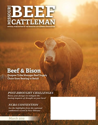 0cb71be7bd Hereford breed journal 2019 by UK Herefords - issuu