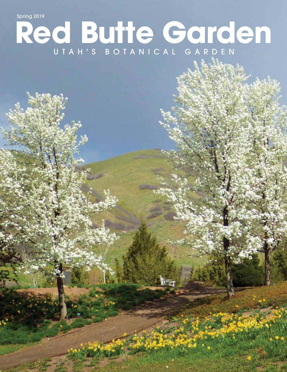 Red Butte Garden Newsletter Spring 2019 By Red Butte Garden Issuu