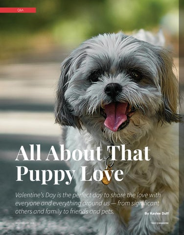 Page 26 of All About That Puppy Love