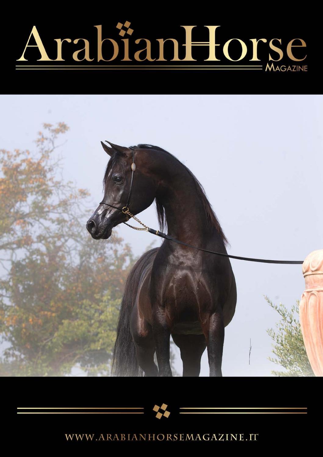 Arabian Horse Magazine N1 2019 By Arabian Horse Magazine Issuu