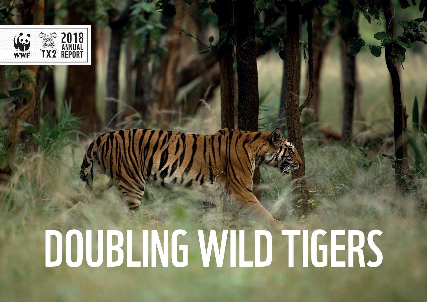 Tiger rich investments ltd bnp paribas investment partners usa holdings inc