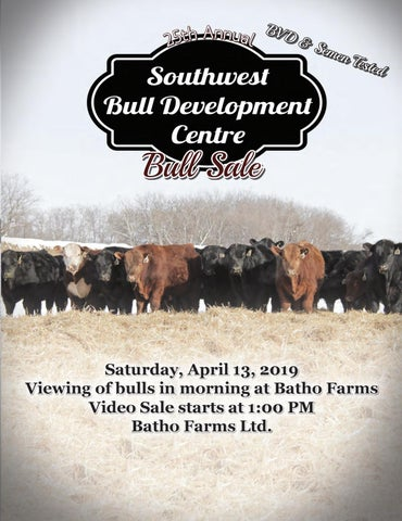 25th Annual Southwest Bull Development Centre Bull Sale by