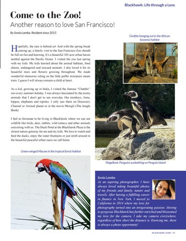 Page 31 of The San Francisco Zoo