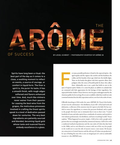 Page 45 of Arôme of Success