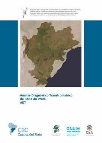 6df63ca7401691 Análise Diagnóstico Transfronteiriço da Bacia do Prata ADT by CIC ...