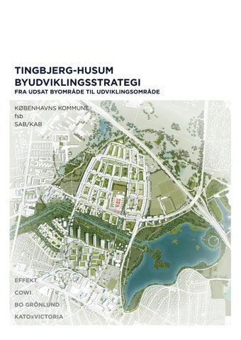 Tingbjerg Husum Byudviklingsstrategi 2015 By Tingbjerg Byudvikling