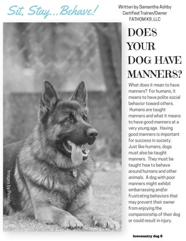 Page 6 of Does Your Dog Have Manners?