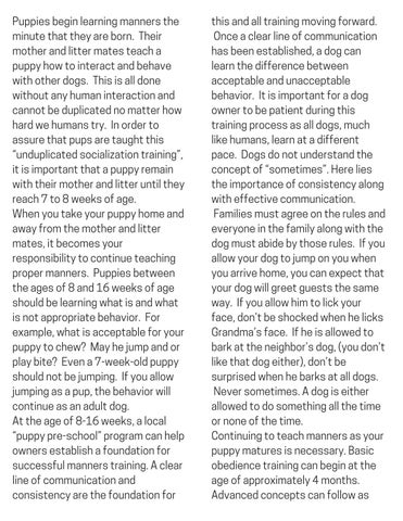 Page 7 of Does Your Dog Have Manners?