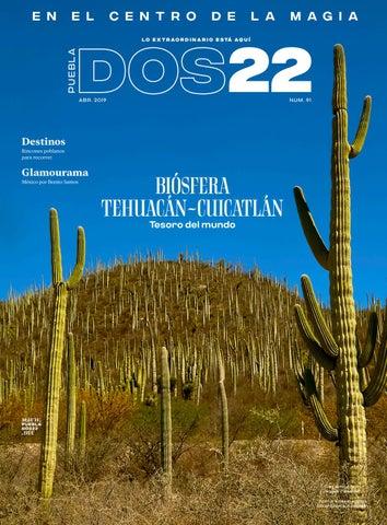 2febe5dda7 Puebla Dos22 Edición No. 91 - abril 2019 by Revista PueblaDos22 - issuu