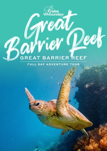 Great Barrier Reef Adventures by Cruise Whitsundays - issuu